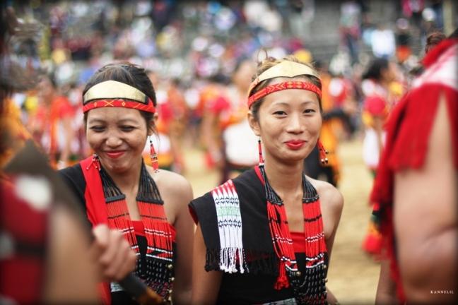 Hornbill Festival, Kohima Hotels, Kohima Homestay, Dzukou Valley, Nagaland Trekking